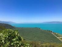 İznik Gölü Turkuaz Rengiyle Büyüledi