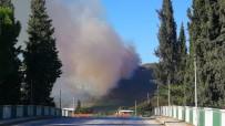 İznik'te Orman Yangını