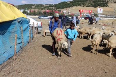 Yozgat'ta Kurban Satışları Birinci Gün De Devam Etti