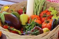 Aydın Büyükşehir Belediyesi Yerel Tohumlara Sahip Çıkıyor