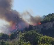 Biga'da Orman Yangını