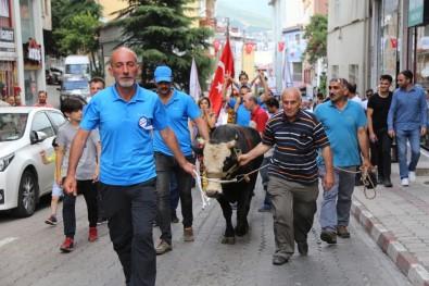 Festivaller Şehri Artvin'de Yılda 84 Festival Yapılıyor