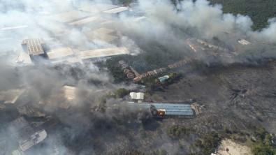 Gebze'de Orman Ve Çalılık Yangını Havadan Görüntülendi