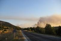 İŞ MAKİNESİ - Orman Yangınını Söndürme Çalışmaları Sürüyor