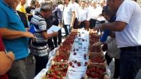 AÇIK ARTIRMA - İskilip'te 'En İyi Çilek' Yarışması