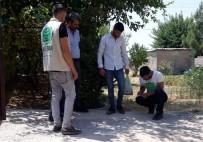 Umut Kervanı Silopi'de 200 Aileye Kurban Eti Ulaştırdı