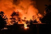 KRİZ YÖNETİMİ - Yunanistan'daki Orman Yangını Devam Ediyor Açıklaması 8 Yaralı