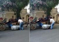 Faytona Sürülen Atın İçler Acısı Hali