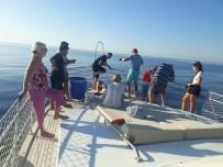 TURİZM CENNETİ - Tekne Turu Sırasında Oltaya Takılan 3 Metrelik Köpek Balığı Turistleri Şoke Etti