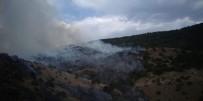 Bayburt'ta Orman Yangınında 100 Dönüm Alan Zarar Gördü