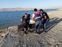 ADLI TıP - Malatya'da Serinlemek İçin Baraja Giren Genç Boğuldu