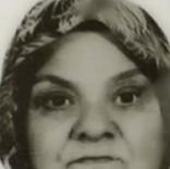 Otomobilde Kafasına Taş İsabet Eden Kadın Öldü