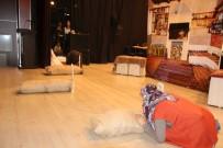 Varto'da 'Zelzele 66' Adlı Tiyatro Oyunu Sahnelendi