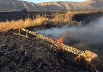 ELEKTRİK ENERJİSİ - Anız Yangını 10 Köyü Enerjisiz Bıraktı