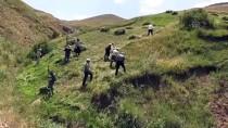 Hayvanları İçin İmece Usulüyle Dağlardaki Otları Biçiyorlar