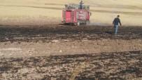 70 Dönüm Ekibi Buğday Tarlası Yandı