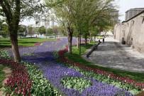 EMIRGAN - Büyükşehir Belediyesi, 1 Milyon 910 Bin 786 Adet Çiçek Dikti