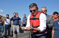 Vali Memiş, Elleriyle Balıkları Besledi