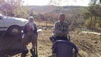 Ağaçtan Düşen Yaşlı Kadın Hayatını Kaybetti