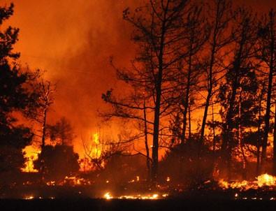 İzmir'deki yangında son durum