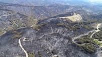FUTBOL SAHASI - 53 Saatlik Yangından Geriye Yürek Yakan Görüntüler Kaldı