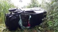 Samsun'da Otomobil Mısır Tarlasına Yuvarlandı Açıklaması 4 Yaralı