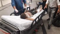 Siirt'te Eşeğin Teptiği Çocuk Yaralandı