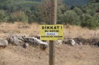 Çorum'un Mecitözü İlçesine Bağlı Koyunağılı Köyünde Bir İnekte Kuduz Vak'ası Görüldü