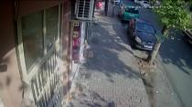 Gaziosmanpaşa'da Silahlı Saldırı Açıklaması 1 Yaralı