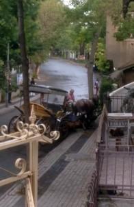 (Özel) Büyükada'da Faytona Sürülen At Bitkin Düştü, Faytoncu Zorla Yerden Kaldırmaya Çalıştı