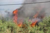 ALI SıRMALı - Sazlık Yangını 4 Saat Sonra Söndürüldü
