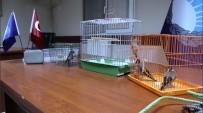 Yasak Avlanan Saka Kuşlarını Zabıta Özgürlüğüne Kavuşturdu