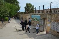 BURHAN FELEK - Mutlu Şehrin Mutsuzluk Müzesine Ziyaretçi Akını