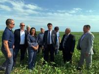 Dündar'dan Türkiye-Kazakistan İlişkilerini Geliştirecek Adım