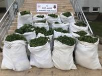 Bingöl'de 1 Ton 280 Kilo Esrar İle 500 Binden Fazla Hint Keneviri Ele Geçirildi