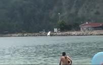 Sürücüsüz Kalan Sürat Teknesi Askeri Limana Çarptı