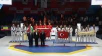 Türkiye Taekwando Milli Takımı Dünya Üçüncüsü