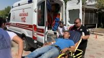 Yılanın Soktuğu Kişi Hastaneye Kaldırıldı