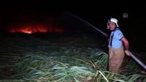 Edremit'te Sazlık Alanda Çıkan Yangın Söndürüldü