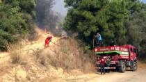 GÜNCELLEME 2 - Antalya'da Orman Yangınları