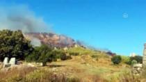 GÜNCELLEME - Antalya'da Orman Yangınları