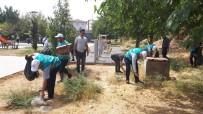 Cizre'de Denetimli Serbestlik Yükümlüleri Çevre Temizliği Yaptı