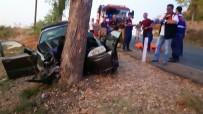 MEHMET YALÇıN - İzmir'de Otomobil Ağaca Çarptı Açıklaması 3 Ölü, 1 Yaralı