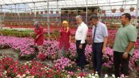 ALI SıRMALı - Kazdağları'nı Çiçek Açtıracak Projeyi İncelediler