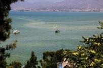 Murat Kurum - Fethiye Belediye Başkanı Karaca'dan Fethiye Körfezi Kirliliği Açıklaması