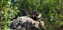 Siirt'te 8 Ayda Tam 23 Terörist Etkisiz Hale Getirildi