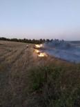 Yenişehir'de Çamlık Alanda Çıkan Yangın Söndürüldü
