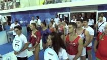 Artistik Cimnastik Dünya Kupası