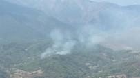 AMANOS DAĞLARI - Hatay'da Çıkan Orman Yangını Büyümeden Söndürüldü