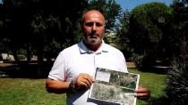 KIRAZLı - Çanakkale'deki Madencilik Faaliyeti